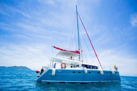 海上巨无霸蓝高620双体帆